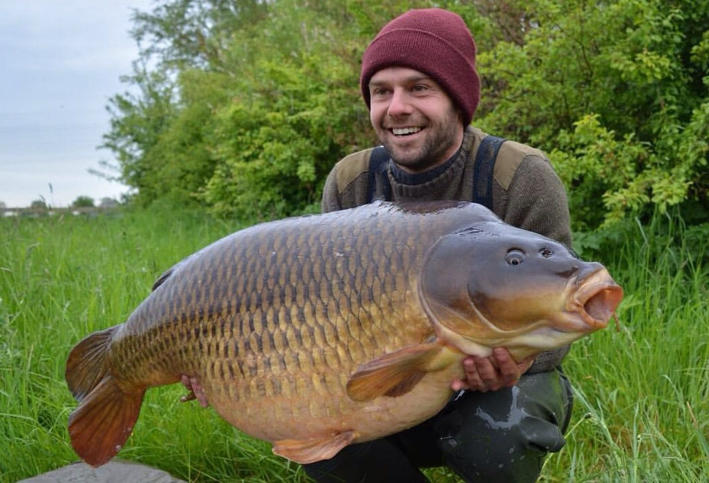 Burghfield common carp